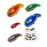 www.windworks.eu Hexbug Larva Roboter Spielzeug